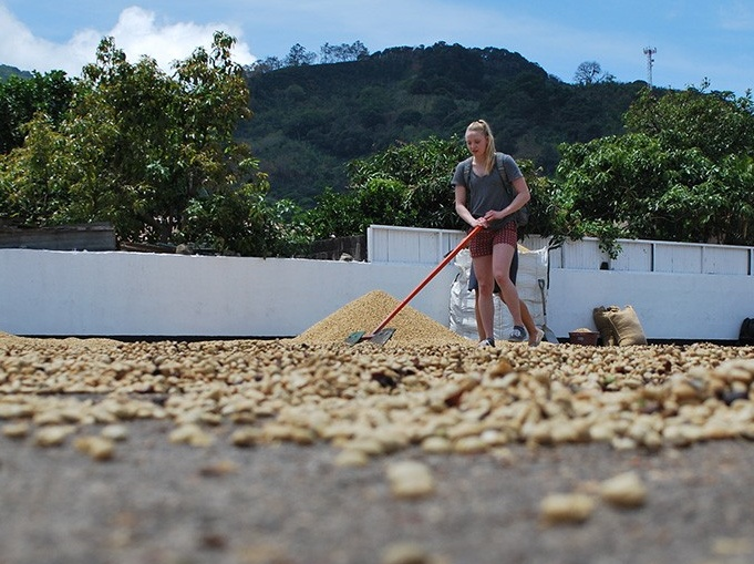 Sarah Baxter, BS '18, at the Coopedota Coffee Cooperative.