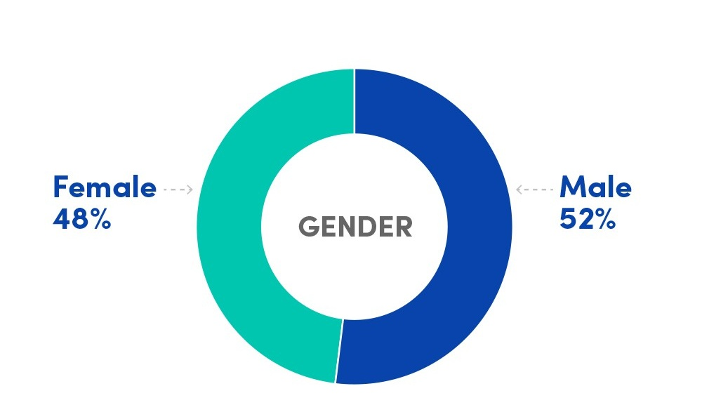 Pie chart indicating the average female/male percentages of incoming students to the MS MIS program, 2014-2019: Female 48%, Male 52%.